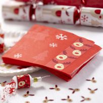 Rocking Rudolf - Napkins (16)